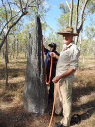 Glen Kulka and Prof. Stephen Garnett measuring a healthy termite mound – Alwal's nesting habitat. <br/>