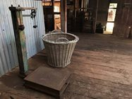 Scales and basket for weighing fleeces.<br/>