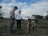 Simon Smale shows Eva and Mike the germinating plants on Monjebup Reserve.<br/>