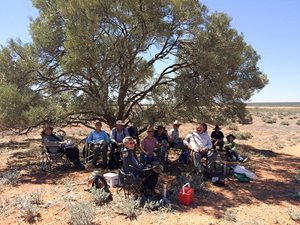 Lunch under a Snakewood tree, Hamelin Station Reserve<br/>