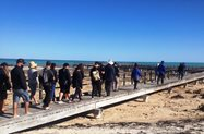 Stromatolite tour at Hamelin Pool.<br/>