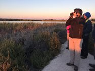 Early morning birding at the Hamelin Lake.<br/>