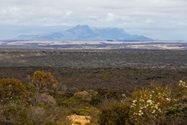A wealth of native vegetation, with the Stirling Ranges in the distance.<br/>
