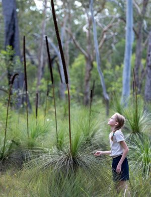 Olivia Barratt admires some grass trees. Photo by Kim Thomsens Photography.