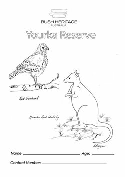 Colouring in sheet for Yourka Reserve (Qld)