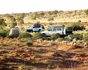 Camping at an organised visit to Ethabuka Reserve, Queensland. Photo Katrina Blake.