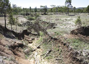 Erosion gully caused by Trapper's Dam spillway. Photo Darren Larcombe and Glen Norris.