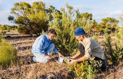 Ecologist Angela Sanders and Healthy Landscape Manager Simon Smale survey fauna in south-west WA. Photo William Marwick.