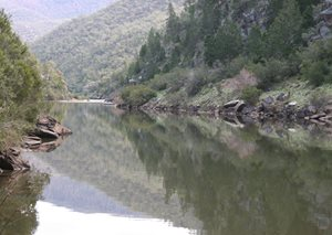 The Murrumbidgee River as it travels alongside our Scottsdale Reserve in NSW. Photo Peter Saunders.