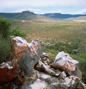 View from a rocky outcrop on Carnarvon Station. Photo Wayne Lawler / EcoPix.