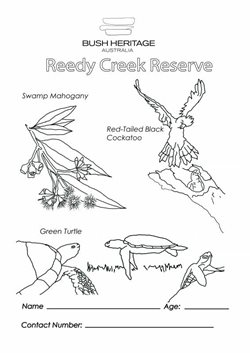 Colouring in sheet for Reedy Creek Reserve (Qld)
