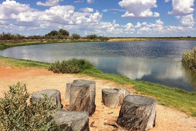 Lake beside the Hamelin Station homestead. Photo by Greg Suosaari.