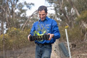 Dr Matt Appleby with a tray full of seedlings. Photo Amelia Caddy.