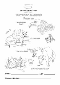 Colouring in sheet for Tasmanian Midlands.