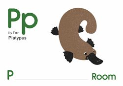P is for Platypus.