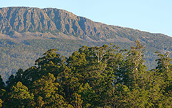 Drys Bluff above Liffey Valley