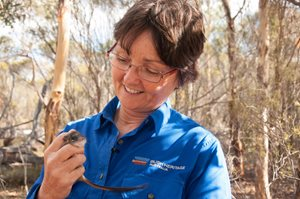 Ecologist Angela Sanders with a Red-tailed Phascogale. Photo Annette Ruzicka.