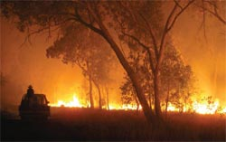 Fires threatening Carnarvon Station Reserve, Qld. Photo Steve Prothero.