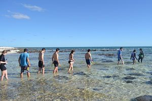 Dr Erica Suosaari leads Applied Geology students from Curtin University on a field trip to study the stromatolites.