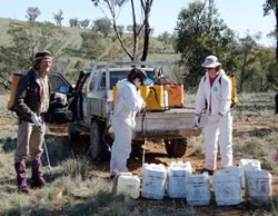 Volunteer weeders at a working bee on Nardoo Hills Reserves, Victoria. Photo Craig Allen