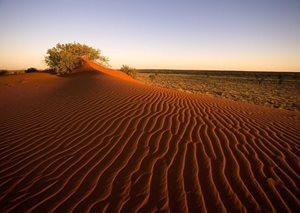 The stunning colour and texture of Gay's Dune at sunset. Photo Paul Evans.
