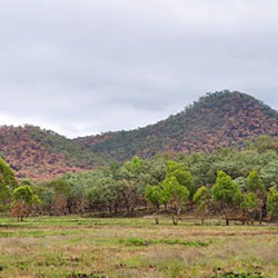 Low intensity patchy fire scars on Carnarvon hills. Photo by Emma Burges