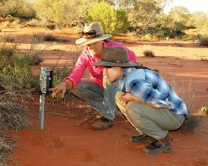 Field Officer Kate Taylor showing volunteer Jirri Prothero a remote monitoring camera.