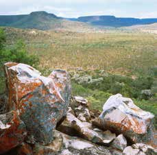 Rocky outcrops on Carnarvon are ideal habitat for the northern quoll. Photo Wayne Lawler / EcoPix