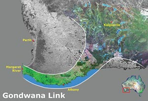 An illustration of the scope of Gondwana Link.
