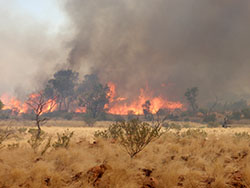 Fire at Ethabuka Reserve
