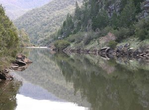 The Murrumbidgee River from Scottsdale Reserve. Photo Peter Saunders.