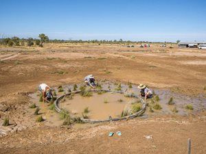 Students from the University of Queensland helping with vegetation around an artificial spring. Photo Annette Ruzicka.