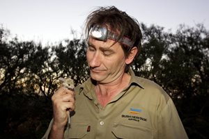 Dr Jim Radford with a Dusky Hopping mouse. Photo Peter Morris.