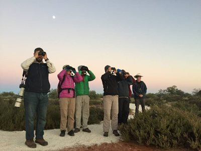 Ecologist Ben Parkhurst leads a birdwatching group on Hamelin Reserve. Grasswrens are hard to spot!