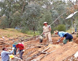 Revegetation work at Tarcutta Hills Reserve, NSW. Photo Joelle Metcalf.