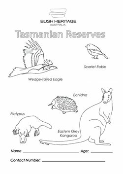 Colouring in sheet for Tasmanian Reserves.