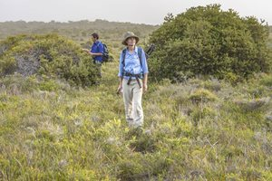 Reserve Manager Annette Dean with Ecologist Matt Appleby among coastal heath. Photo Annette Ruzicka.