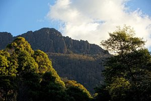Dry's Bluff towers over Liffey River in Tasmania. Photo Peter Morris.
