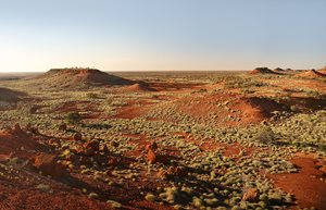 Pullen Pullen is a harsh landscape of Spinifex and Gibber plains interspersed by rocky 'jumpup' mesas and water courses lined by gidgi and Mulga trees.