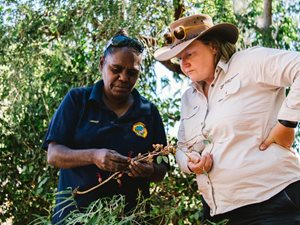 Jacqueline Shovellor with Bush Heritage CEO, Heather Campbell. Photo William Marwick.