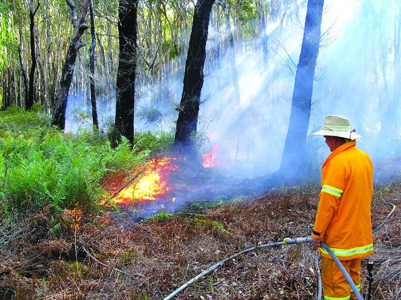 www.bushheritage.org.au